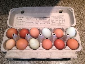 Backyard Chicken eggs are so beautiful, you are going to want to display them on your counter-top!