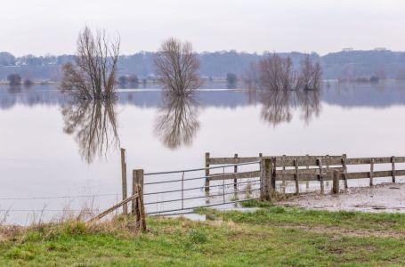 Flooded floodplain near Wageningen
