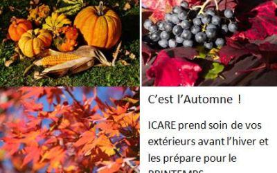 Icare Service A la Personne est à l'écoute de vos espaces verts et jardinières