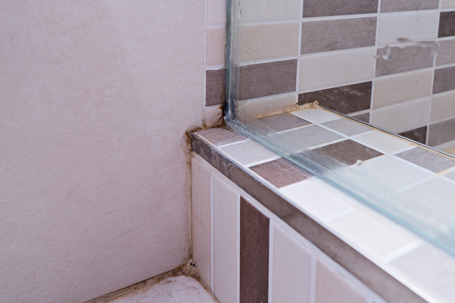 remove mold and mildew in your grout