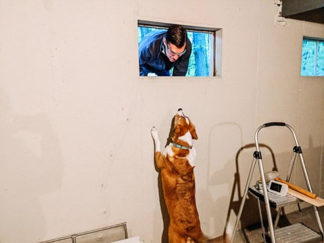 Murphy helping replace basement casement window