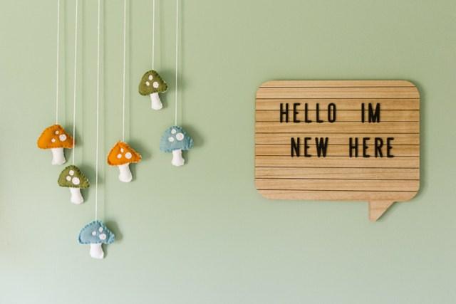 Hello I'm New Here sign with DIY felt mushroom toadstools nursery wall decor