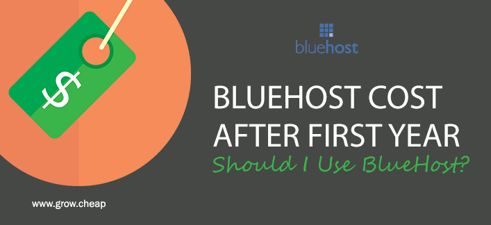 BlueHost Cost After First Year: Should I Use BlueHost?