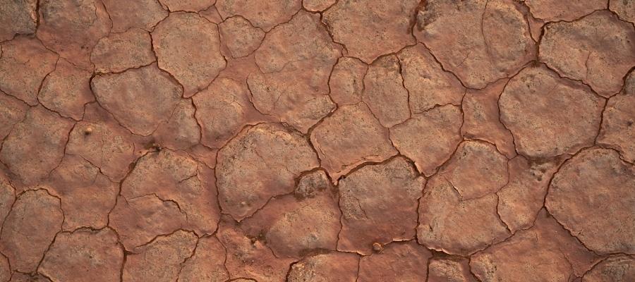 redish brown cracked mud