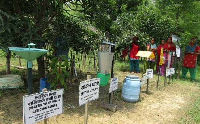 Resilient-Agriculture-through-Integrated-Pest-Management