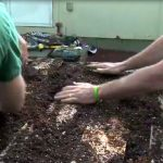 Use good quality soil, and really pack it in!