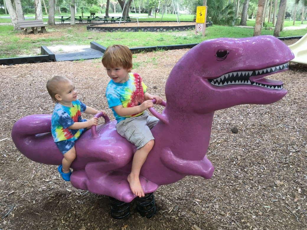 ... the rideable green and purple dinosaurs. There are 2 infant toddler  swings in one section and at least 4 regular swings in a different area. 7437ba4055