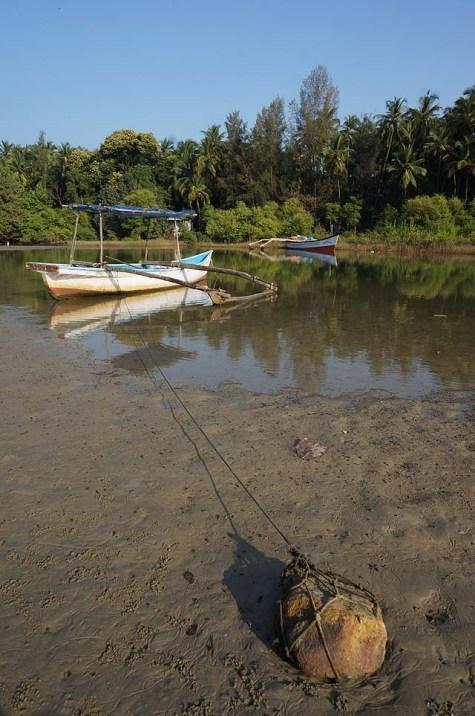 Palolem backwaters