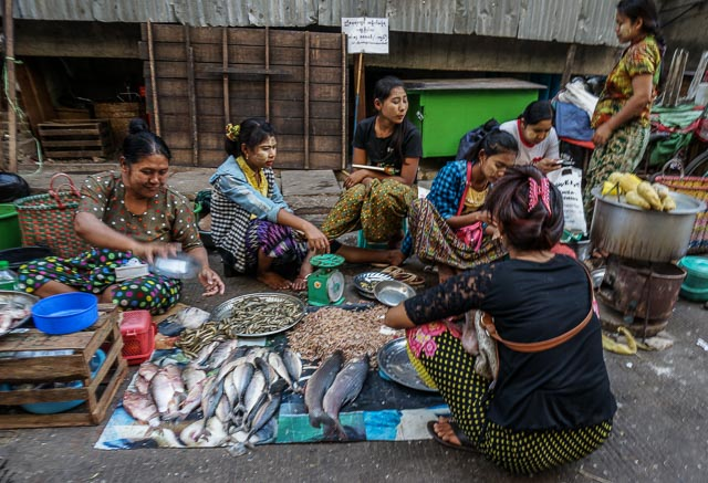 Fisher sellers in Yangon