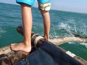 Negombo sailing