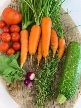 harvesting-all-summer-long