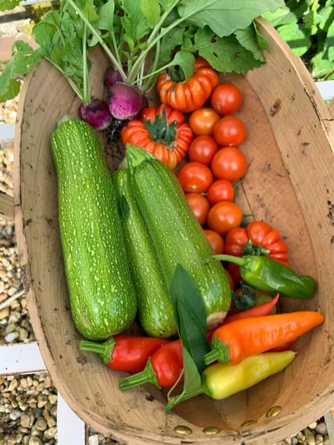 september-harvest