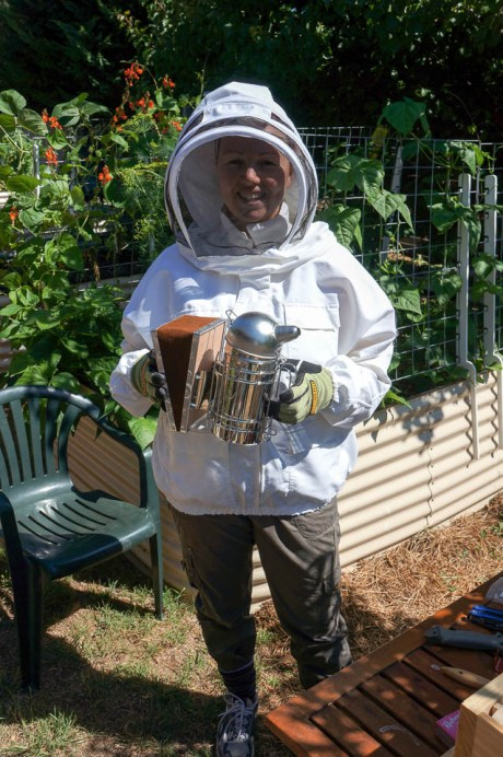 Growing Home Adventures of a Backyard Beekeeper