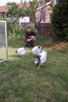 Keeping Chicken | Urban Homesteading | Growing Home