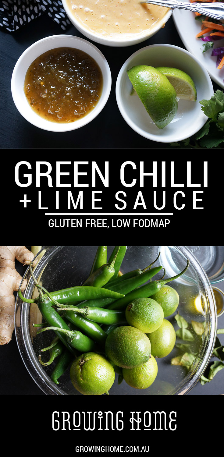 Green Chilli and Lime Sauce | Gluten Free, Low FODMAP | Growing Home