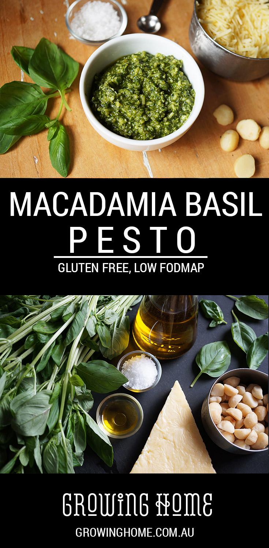 Macadamia Basil Pesto | Gluten Free, Low FODMAP | Growing Home
