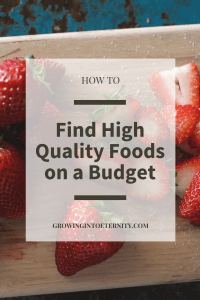 How to Find Nutrient Dense Foods on a Budget