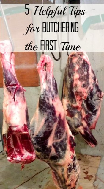 A homesteader gives 5 tried-and-true butchering tips for beginners.