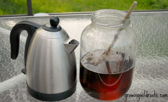 Kombucha Making Guide for Lazy Beginners. A step-by-step how-to for making kombucha tea. with pictures.
