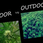 outdoor-vs-indoor