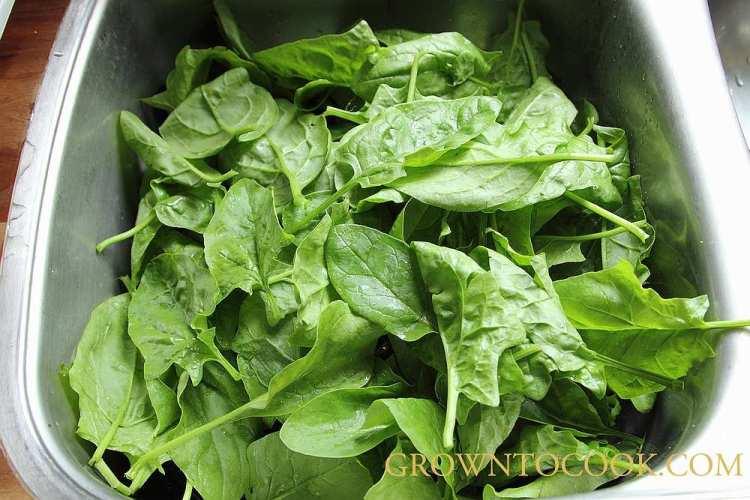 washing spinach
