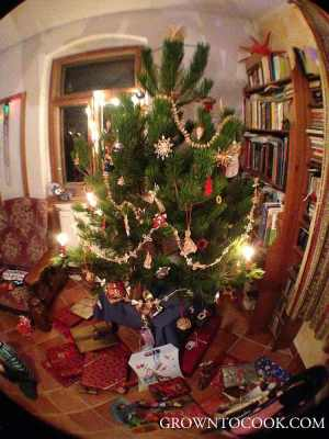 christmas tree fish eye lense