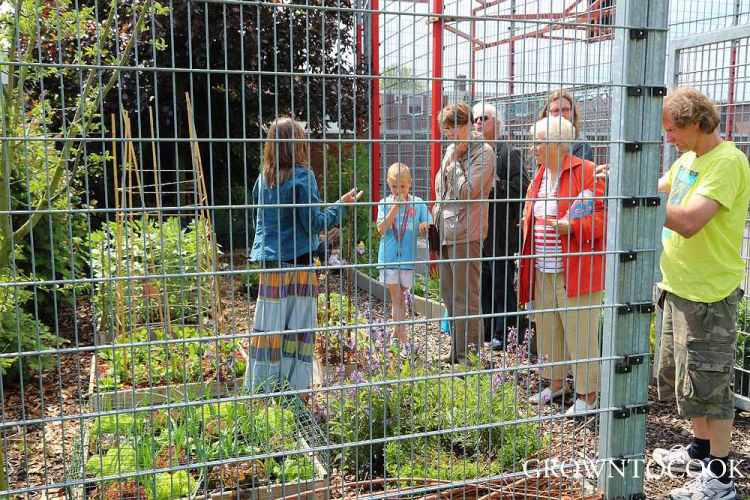 community garden open day