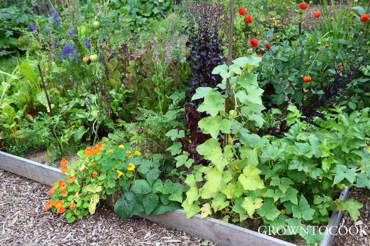 garden connect in august