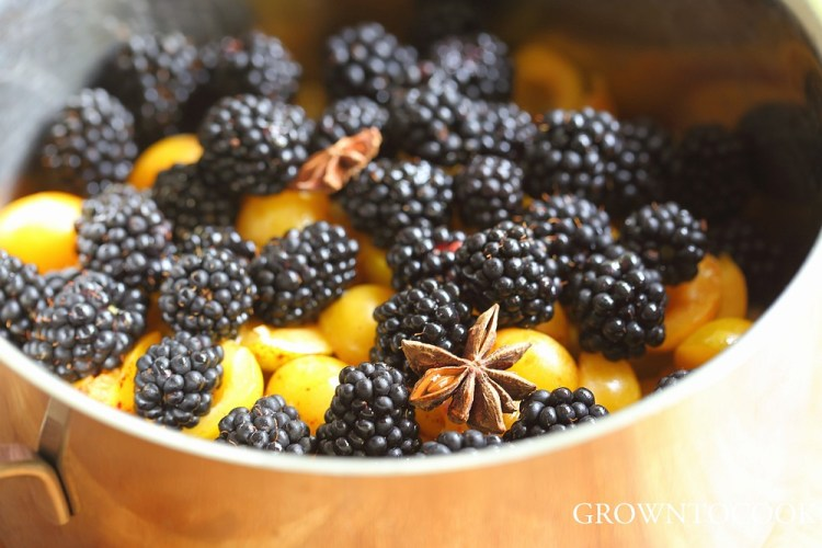 mirabelles and blackberries