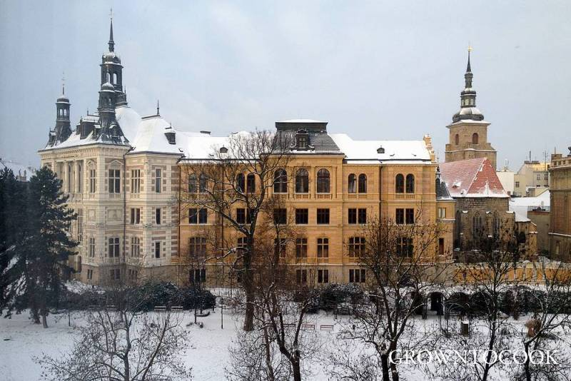 Plzen in snow
