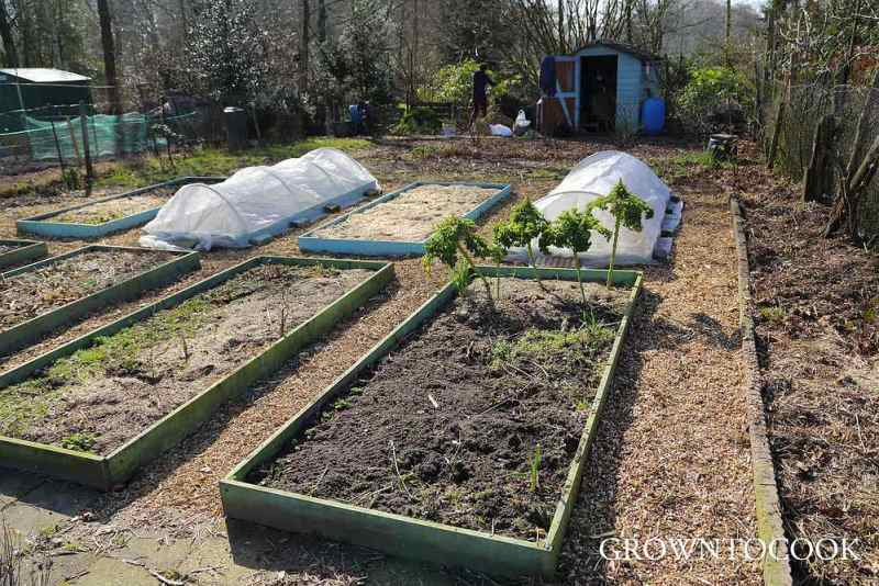 allotment 9th March