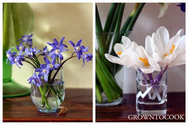 sized_Seasonal flowers April