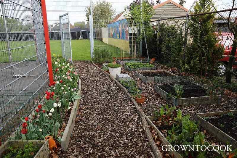 community garden april