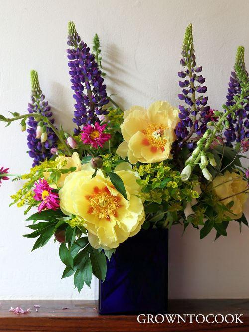 seasonal flower alliance