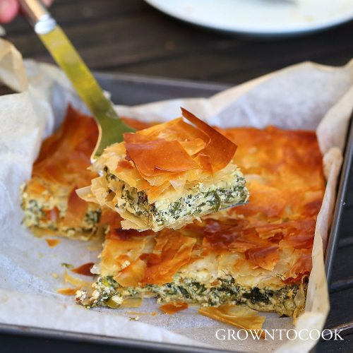 chard and herb pie