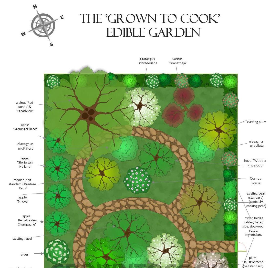 Design for our permaculture garden