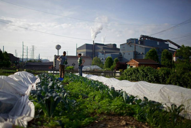 Grow Pittsburgh Braddock Farms