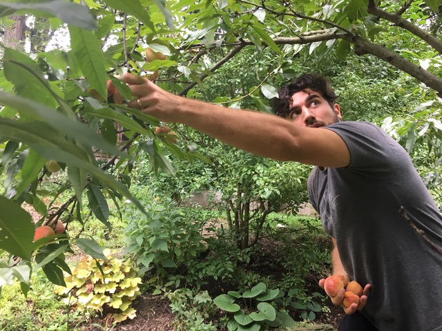 Grower's Spotlight: Jordan Tony