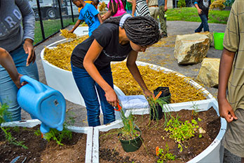Grow Pittsburgh In the News
