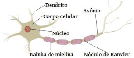 Maconha e esclerose Múltipla