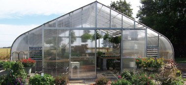 TLC country floral greenhouse