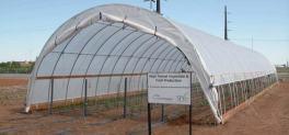 7 Spruce farm texas agrilife