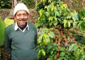 Bom Bahadur Thapa stands beside a coffee plant on Shangrila Coffee, a co-operative organic farm in Daruan village, Syangja district of Nepal. [Ujwal Thapa/Khabar]