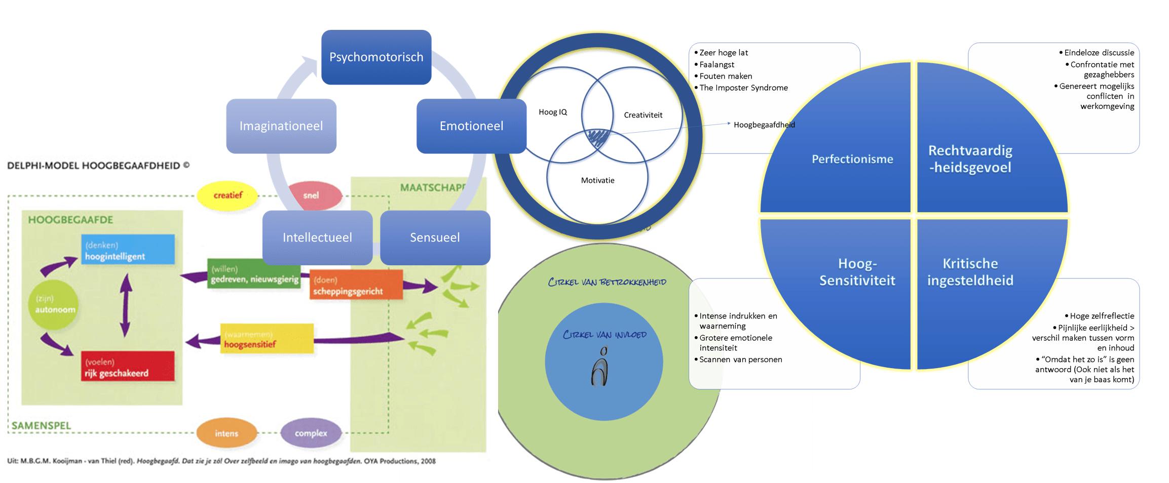 Modellen van hoogbegaafdheid