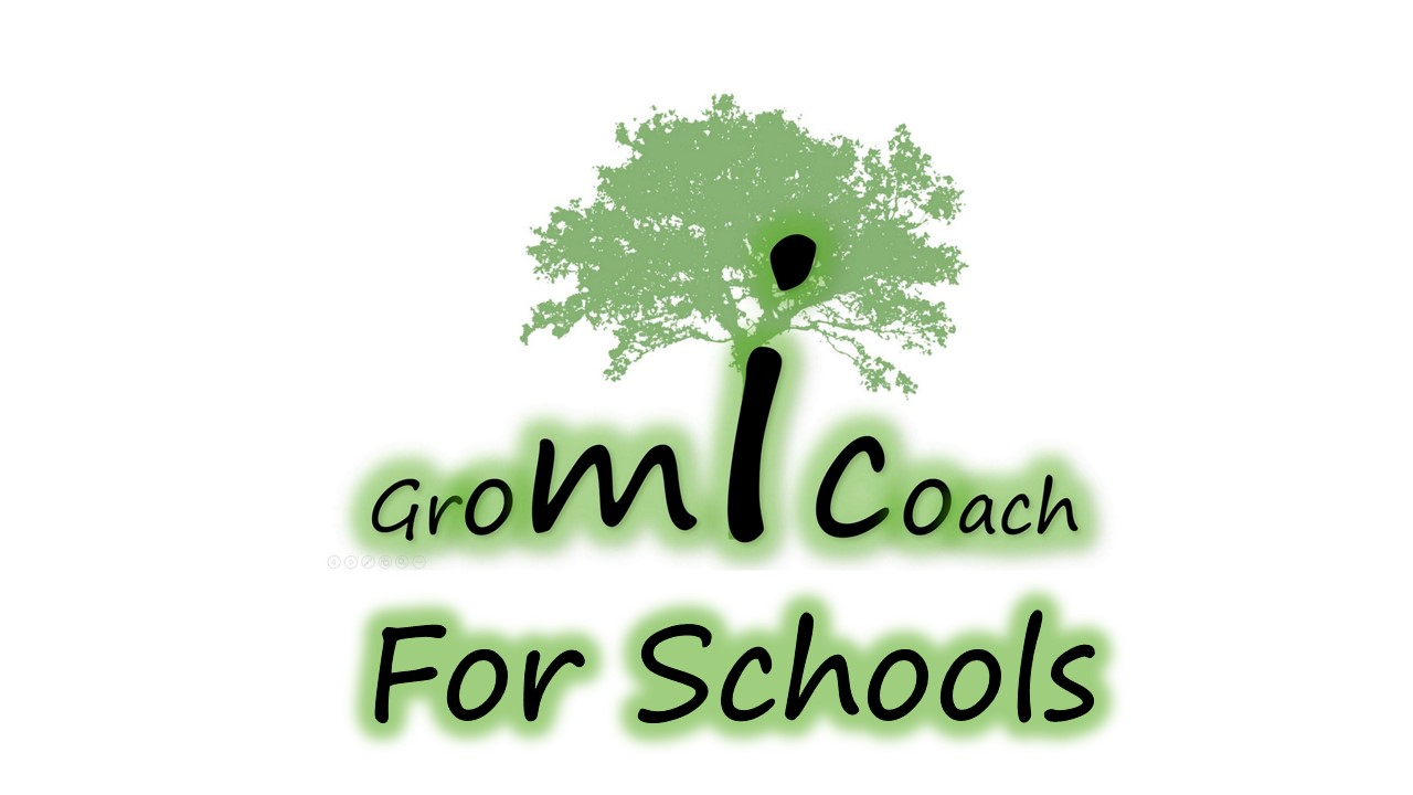 Gromicoach for schools