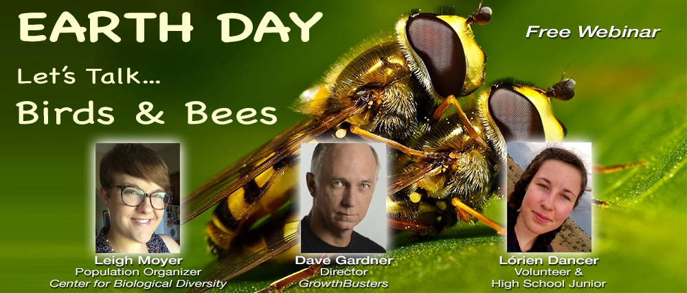 Birds & Bees on Earth Day free webinar bees mating