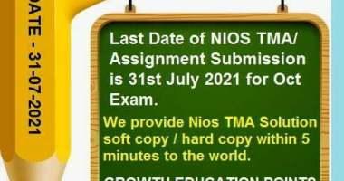 nios assignment pdf