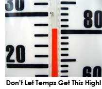 When growing marijuana, consider 80 degrees F (27 degrees C) as the upper limit you should allow your marijuana plants to endure