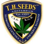 T.H. Seeds - Bubblegum Fem 2