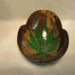 Impastiera Cocco leaf